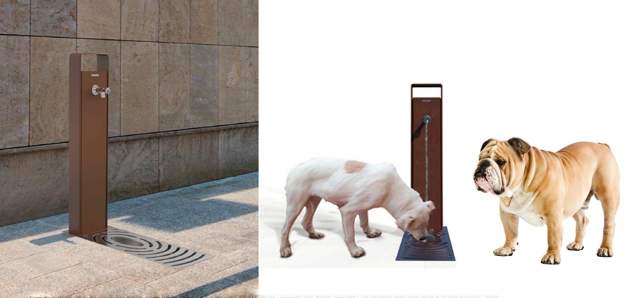 městské pítko s miskou pro psy